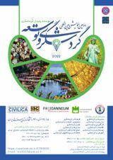 پوستر دومین همایش بین المللی گردشگری و توسعه